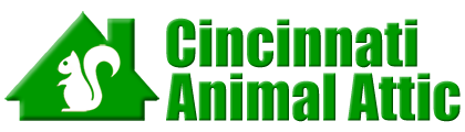 Cincinnati Animal Attic